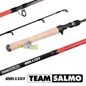 Удилище кастинговое Team Salmo BALLIST 6.1/M